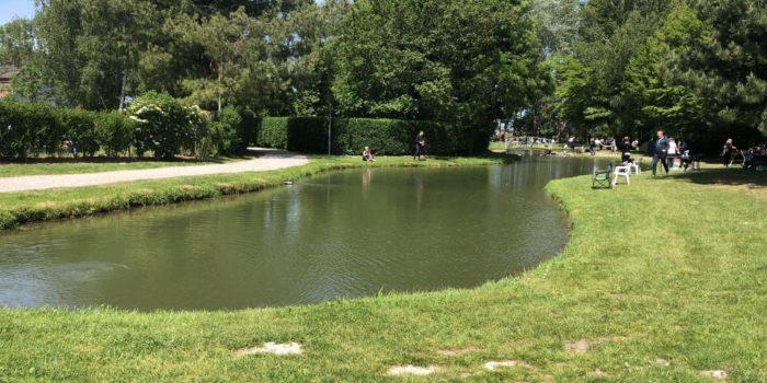 L'étang de Pêche du Moulin Bleu vous propose la location de bassin.